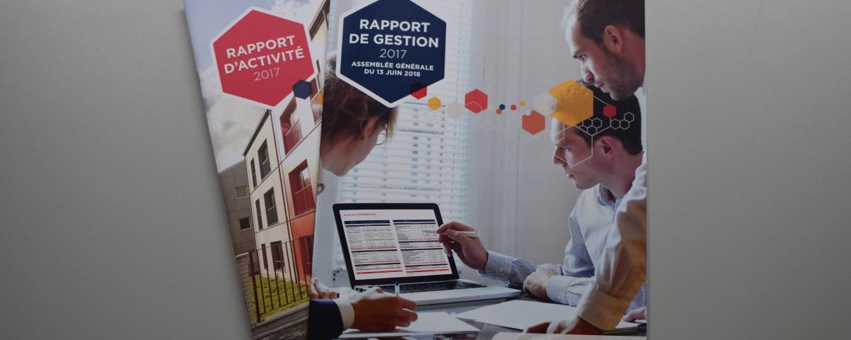 Deux documents réalisés pour la maison flamande : le rapport d'activité et le rapport de gestion